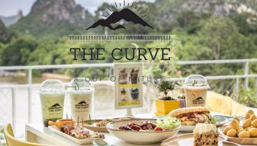 the curve 600-315